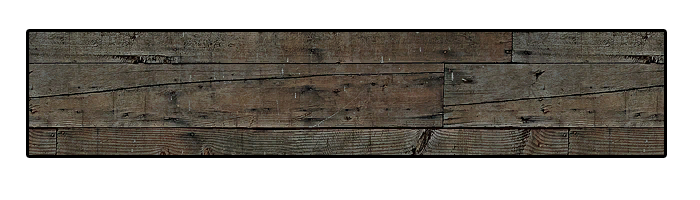Bridge Plank: Full