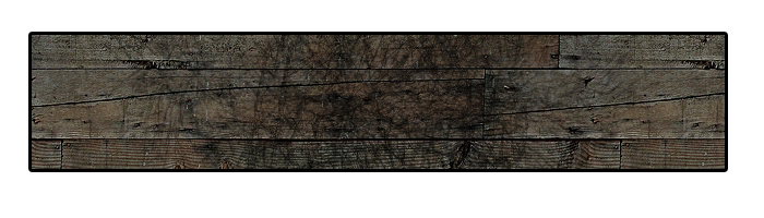 plank-2.png?w=1050&h=300