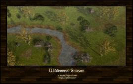 Wilderness Stream Day