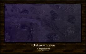 Wilderness Stream Night